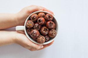 Erntezeit der Mispel – wann sind die Früchte reif?
