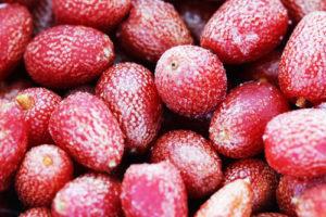Goji-Beeren einfrieren – das gibt es zu beachten