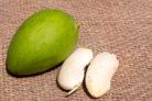 mango-keimen